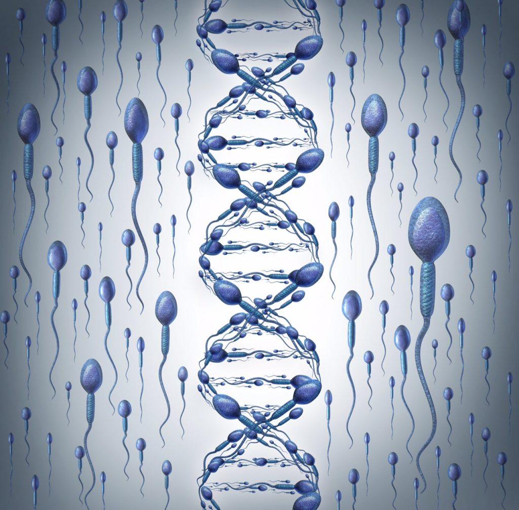 Κατακερματισμός DNA Σπέρματος